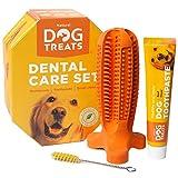 Natural Dog Treats Cepillo de Dientes y Dentífrico Set para Perros, 100% Natural Caucho Dog Brushing Stick, Juguete para Masticar